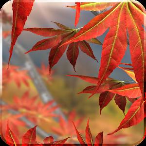 Autumn Tree Live Wallpaper
