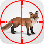Fox Educational Call Hunt