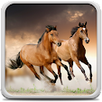 Horses Live.. file APK for Gaming PC/PS3/PS4 Smart TV