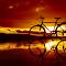 IMG_20150211_174540 copy.jpg