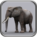 ELEPHANT HUNTER 2014 icon