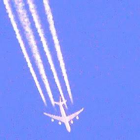 Plunge through the blue Sky by Nat Bolfan-Stosic - Uncategorized All Uncategorized ( clear, sky, blue, plung, plaine )