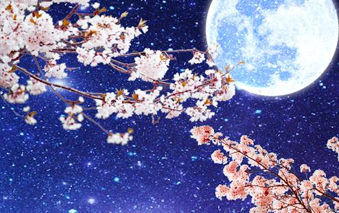 Sakura moonlit night