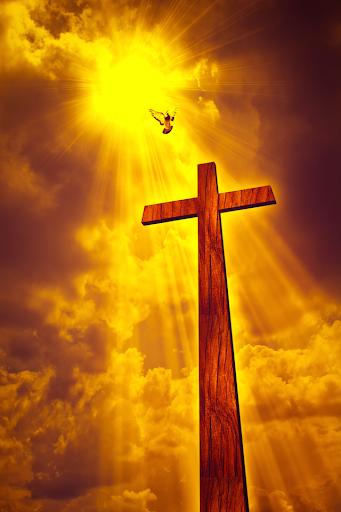 Holy Bible King James Version Screenshot