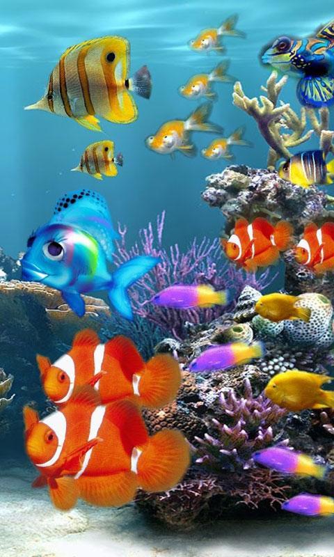Aquarium live wallpapers android google play for Live fish aquarium wallpaper