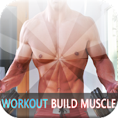 90 Day Workout Build Muscle