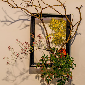 Wall Flowers by Angelica Glen - Artistic Objects Still Life ( frame, art, leaves, flowers, shadows, floral,  )