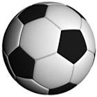 Estadísticas de fútbol Lite icon