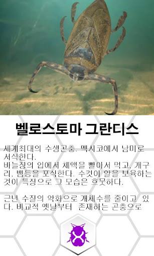 【免費教育App】거대벌레도감-APP點子