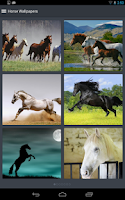 Screenshot of Horse Wallpapers