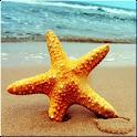 Beach HD Wallpaper icon