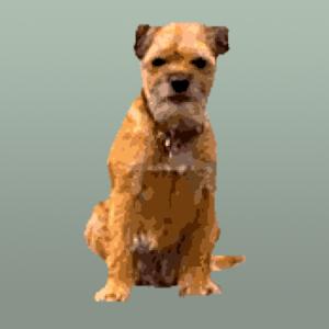 DoggiePubs