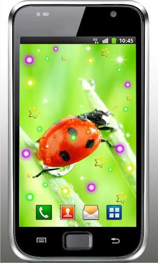 Ladybug Amazing livewallpaper