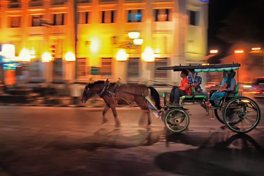 dokar of yogyakarta by Dhimas Prastowo - Transportation Other ( #traditional, #transportation, #yogyakarta, #night, #panning,  )