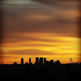 Looking west by Paul Stanley - Instagram & Mobile Instagram ( sunset, hollywood )