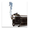 Shotguns icon