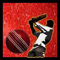 Indo Pak Cricket logo