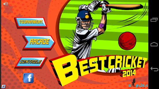 Best Cricket 2014