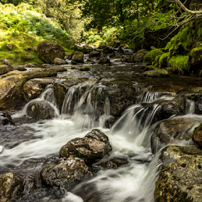 Sping Falls by Gordon Bishop - Landscapes Waterscapes ( plant, stream, mountain, wood, relax, tropical, purity, waterfall, stone, rock, travel, beauty, leaf, flow, landscape, spring, sky, tree, nature, fresh, foliage, creek, power, motion, wonderful, cool, water, wild, spray, park, flowing, green, beautiful, forest, scenic, paradise, torrent, wilderness, vacation, blue, cascade, outdoor, fall, summer, cataract, natural, river )