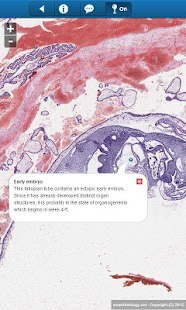 smart Histology Lite- screenshot thumbnail