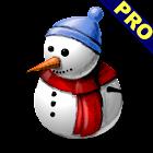 Mercatini di Natale PRO icon