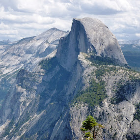 half dome  by Holly Herrmann - Landscapes Mountains & Hills ( yosemite )