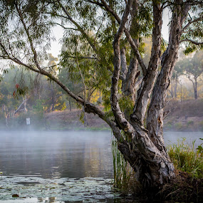 by Brad Uhlmann - Landscapes Waterscapes ( relax, tranquil, relaxing, tranquility )