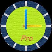 ClockView Pro - Talking Clock