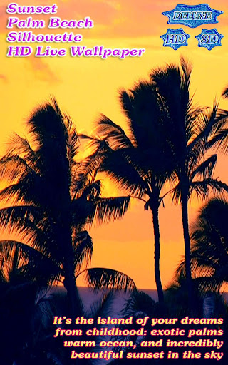 Sunset Palm Beach Silhouette