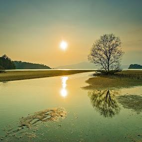 Footprints by Mark Santos - Landscapes Sunsets & Sunrises (  )
