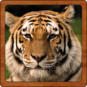Wildlife Sounds icon