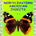 North Eastern American Insects icon