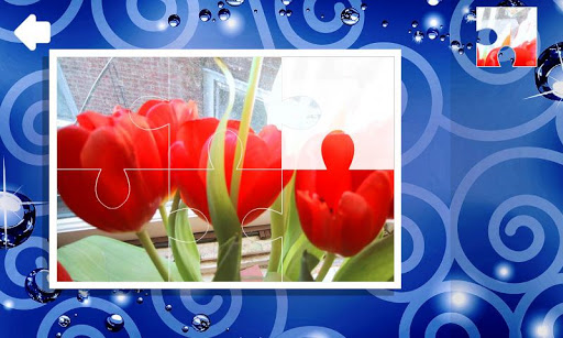 Пазлы. Цветы