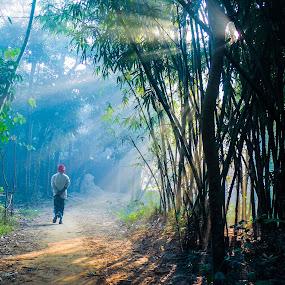 Beauty of Nature by Topu Saha - City,  Street & Park  Street Scenes ( ray, bangladesh, winter, nature, muktagacha, street, sunrays, mymensingh, sunray, morning, people, sun, Travel, People, Lifestyle, Culture, , #GARYFONGDRAMATICLIGHT, #WTFBOBDAVIS )