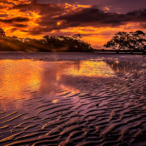 Ripples by Alex Bogdan - Landscapes Sunsets & Sunrises ( clouds, water, sand, reflection, sky, sunset, trees, ocean, coastal, dusk, rays, sun, colours )