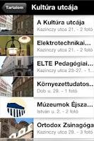 Screenshot of Erzsebetvaros
