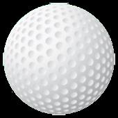 골프 스트록