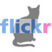 WallViewer Flickr Cats