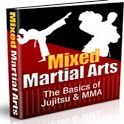 Mixed Martial Arts icon