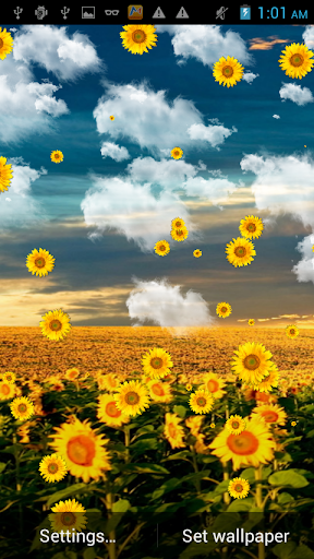 Sunflower Falling Wallpaper
