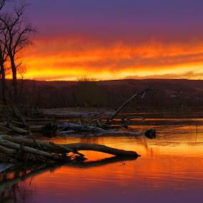 Vibrant Sunset by Dustin White - Landscapes Sunsets & Sunrises ( water, hills, reflection, logs, sunset, vibrant, river,  )