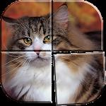 Best Cat Puzzle Games Free