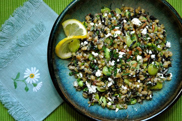Wheatberry & Wild Rice Salad with Favas & Fried Seeds Recipe