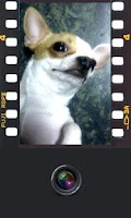 Screenshot of Film Camera