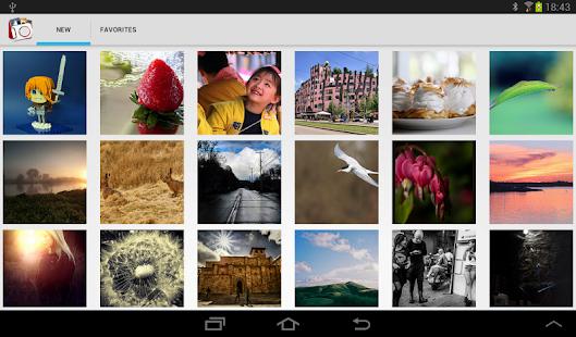Flickr Photos
