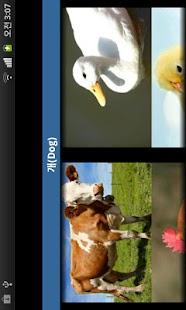 동물소리 (우리 아가를 위한/Animal Sound)- screenshot thumbnail