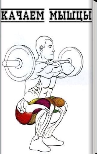 Качаем мышцы