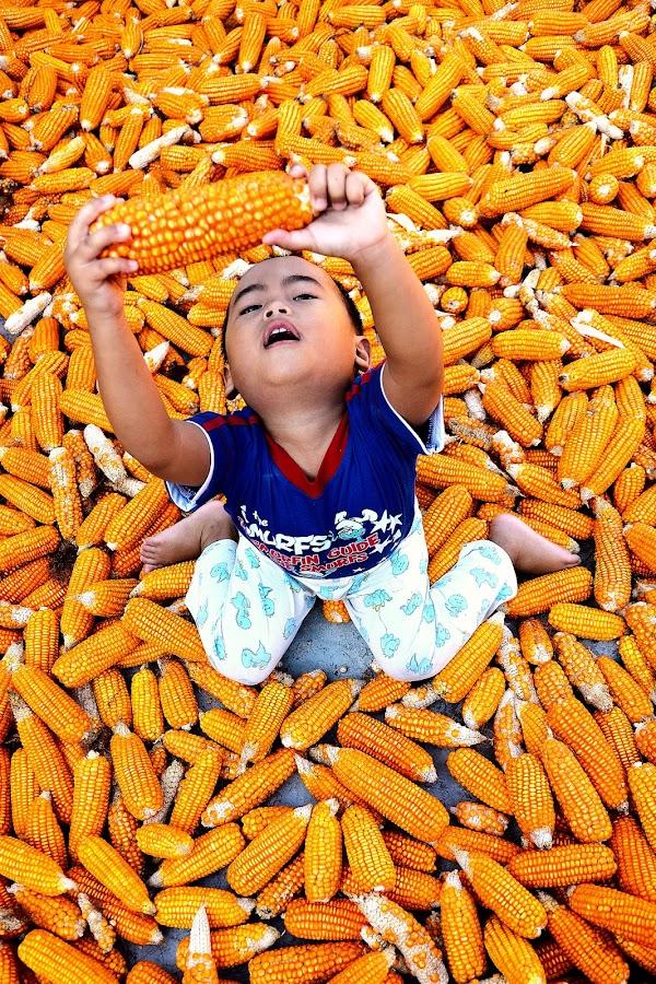 corn harvest by Rhonny Dayusasono - Babies & Children Children Candids
