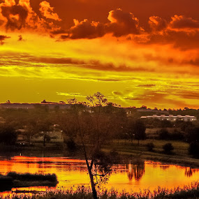 Sunset fire by Graeme Wilson - Landscapes Sunsets & Sunrises ( setting sun, fiery sun, sunset, twilight, dusk, fire )