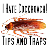 I Hate Cockroach: Tips & Traps